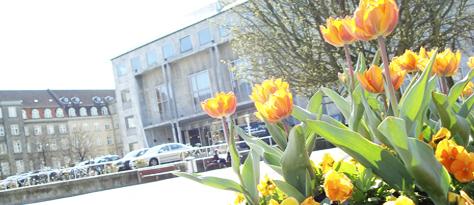 blomsterhandler aarhus c